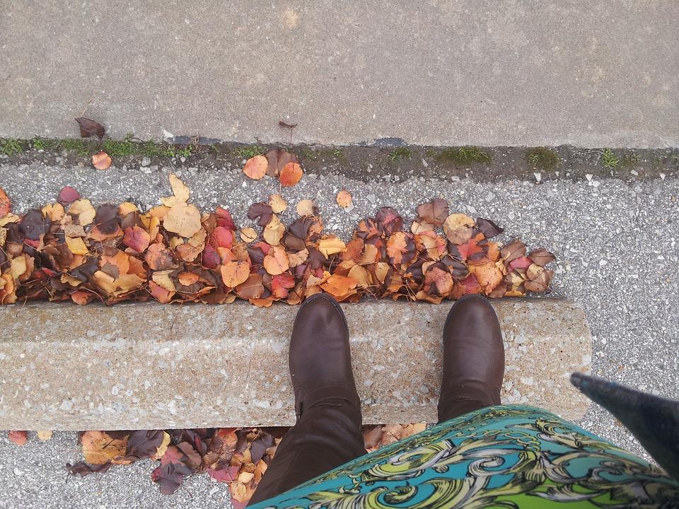 fall-423730_960_720